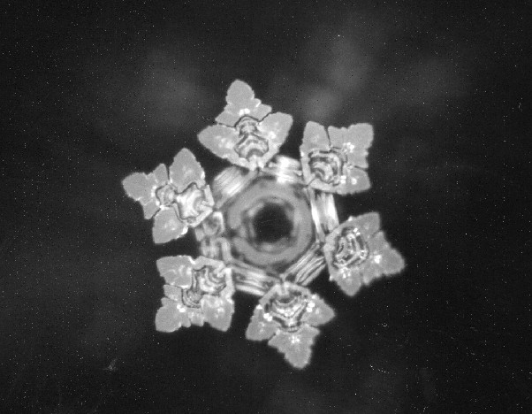Dr Emoto Crystal from my music